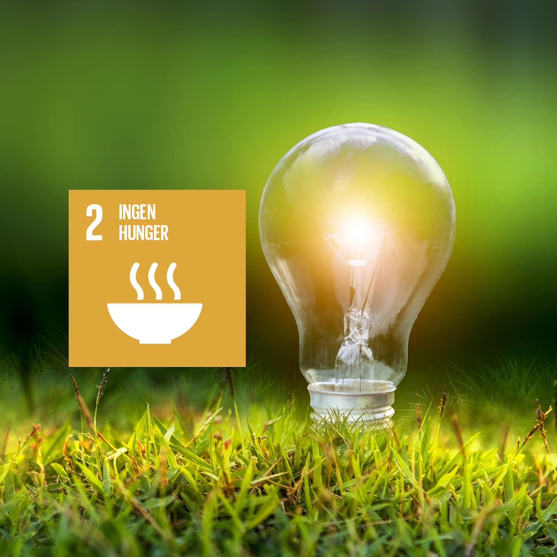 Innovativa livsmedelsföretag bidrar till FNs mål 2 – ingen hunger