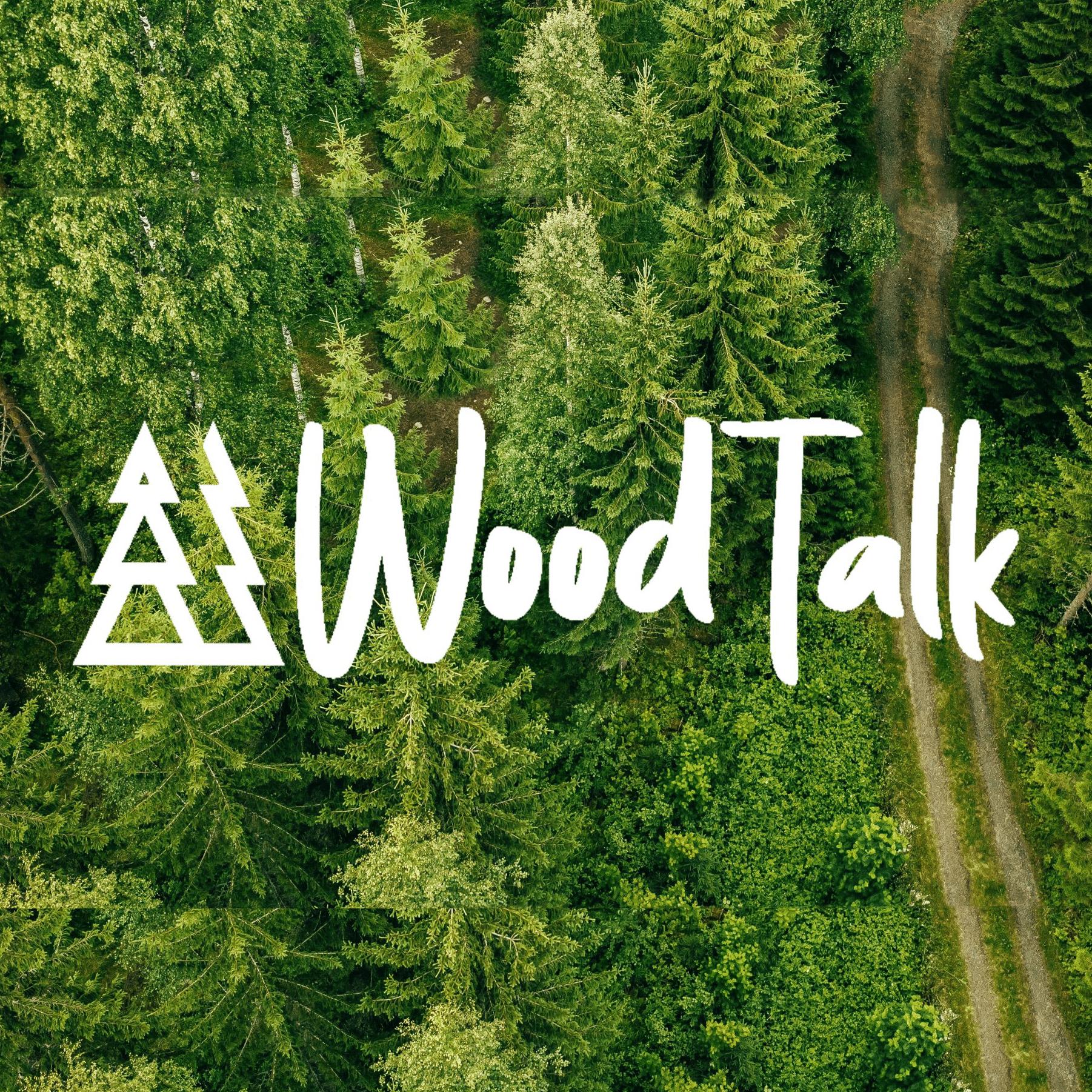 Wood Talk: Möjligheterna med lignin – skogens naturliga klister